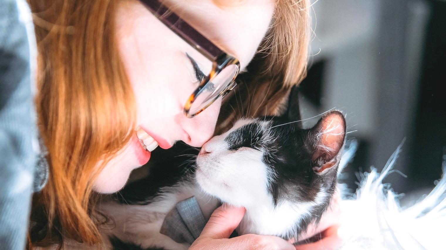 Our partner's adoption fees:$180 for one kitten$335 for two kittens - 100% of adoption fees go to our partner rescue.