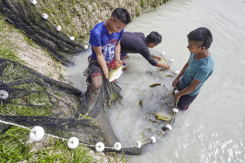 Poverty reduction_Columbia_fish_farming_Amazonia_2016-07-17_Columbia_MG_0989.jpg