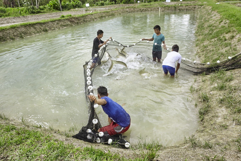 Poverty reduction_Columbia_fish_farming_Amazonia_2016-07-17_Columbia_MG_1068.jpg
