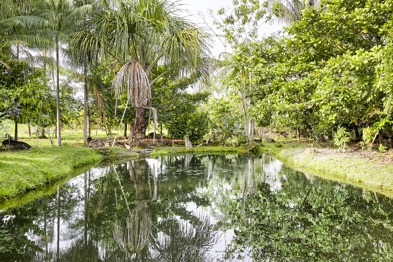 Poverty reduction_Columbia_fish_farming_Amazonia_2016-07-17_Columbia_MG_1401.jpg