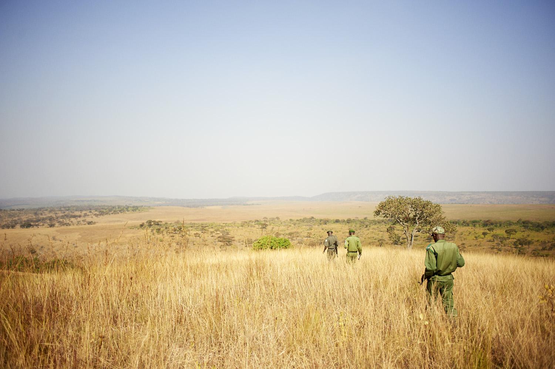 Environmental_sustainability_DR_Congo_Upemba-national-park_20160730_Kongo_Upemba_Park_077.jpg