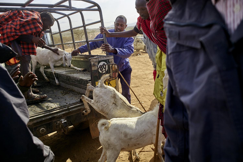 Inequalities_Kenya_Agricutlure-Development-Masai-farming_2016-07-21_Kenya_0162.jpg