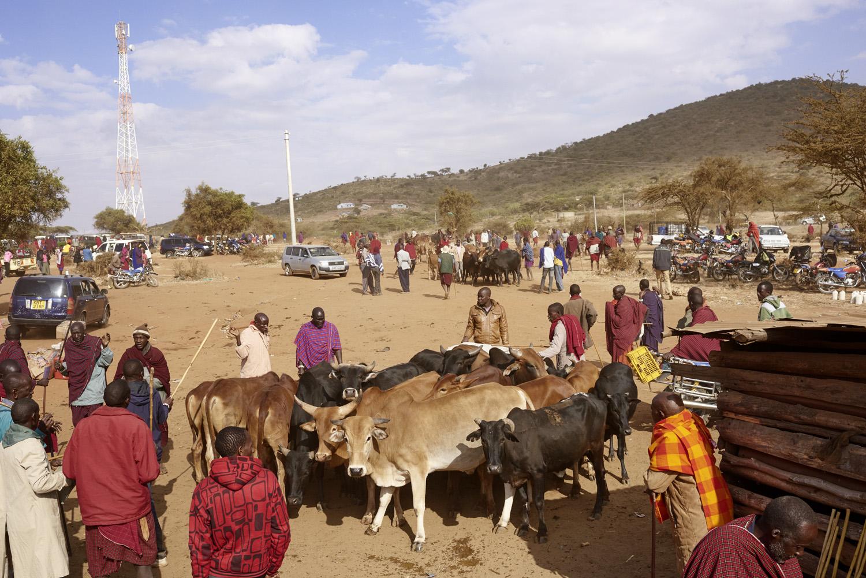 Inequalities_Kenya_Agricutlure-Development-Masai-farming_2016-07-21_Kenya_0491.jpg