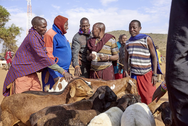 Inequalities_Kenya_Agricutlure-Development-Masai-farming_2016-07-21_Kenya_0472.jpg