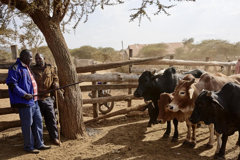 Inequalities_Kenya_Agricutlure-Development-Masai-farming_2016-07-21_Kenya_0533.jpg