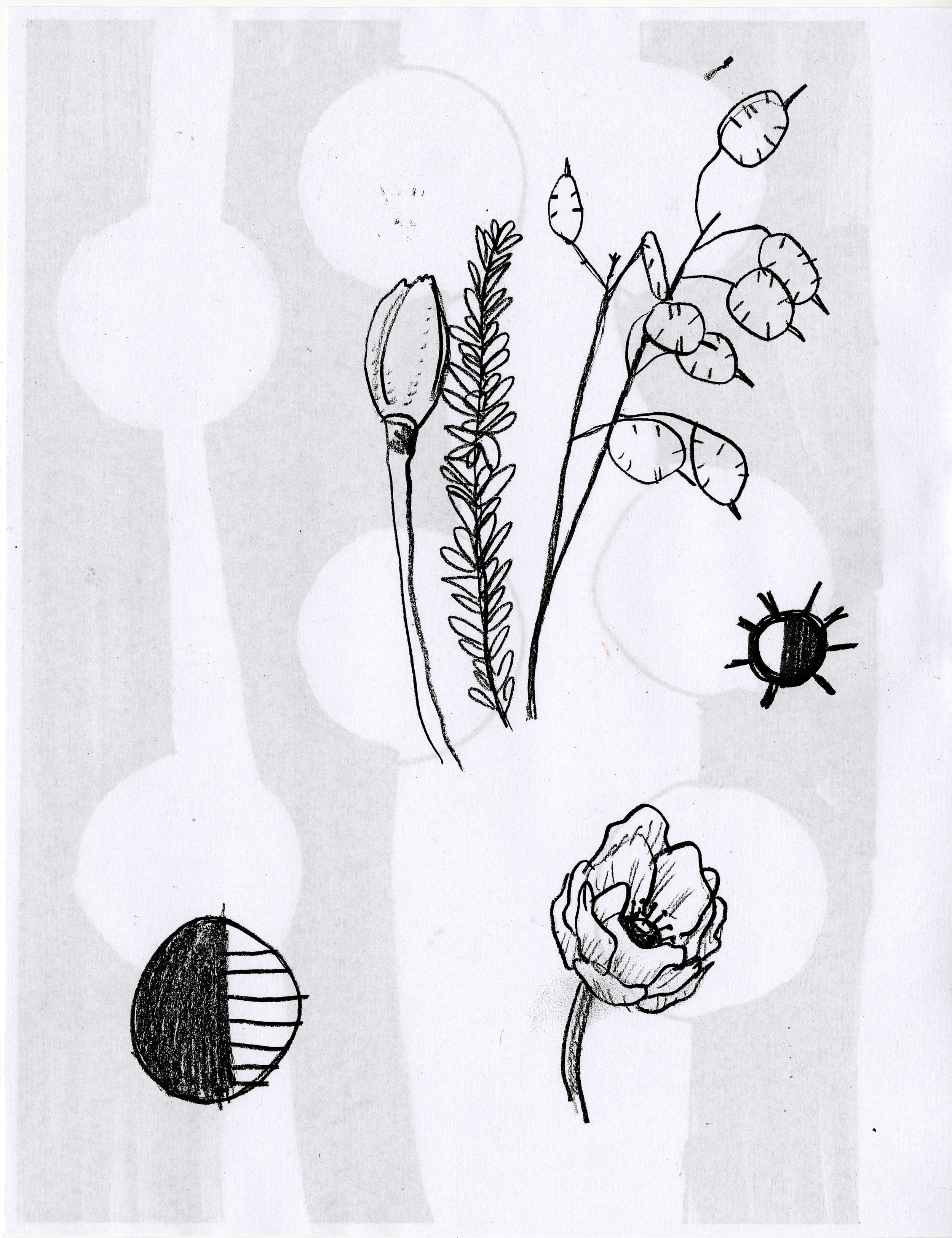 floral 01.jpg