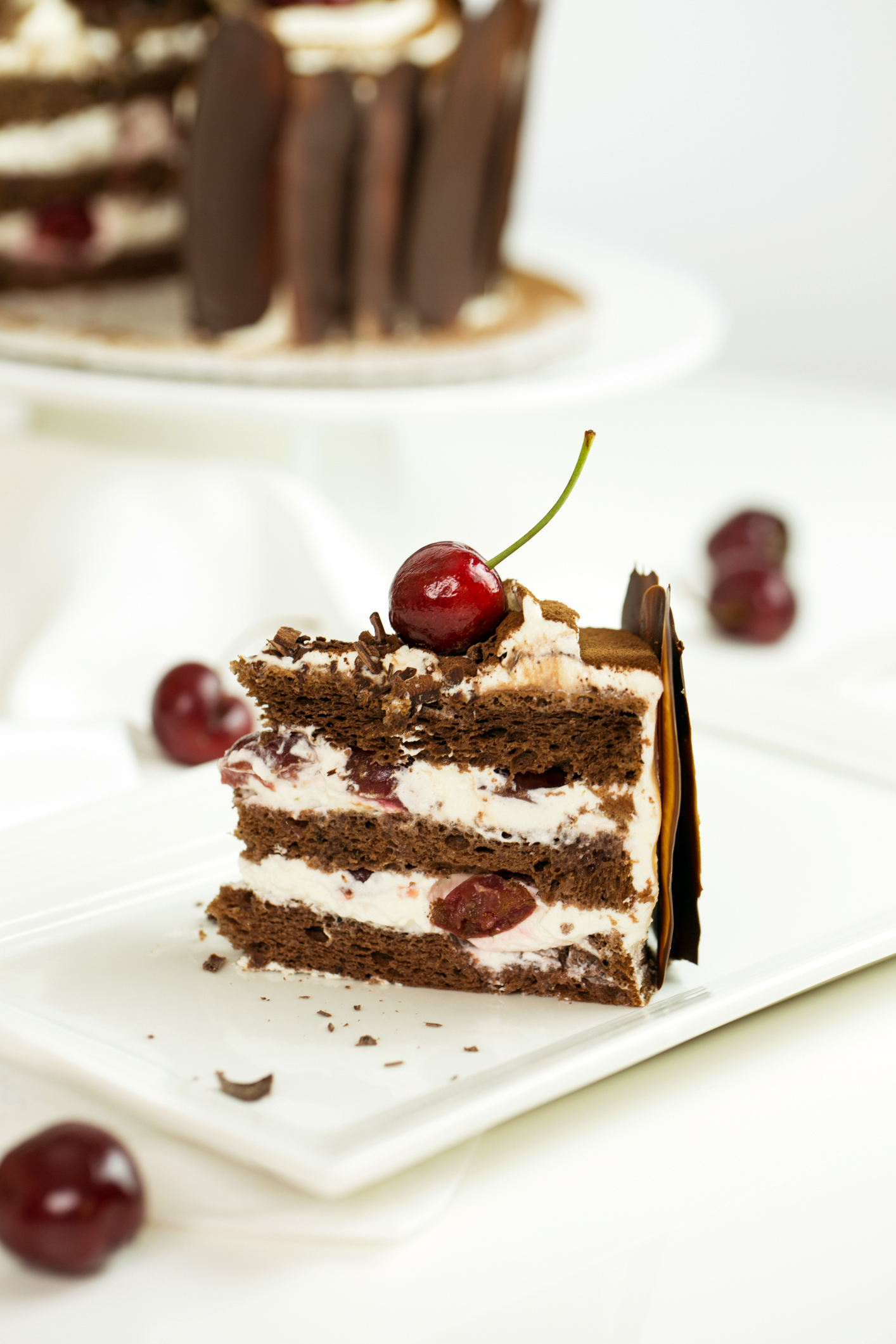 Black Forest by Peggy's Kitchen