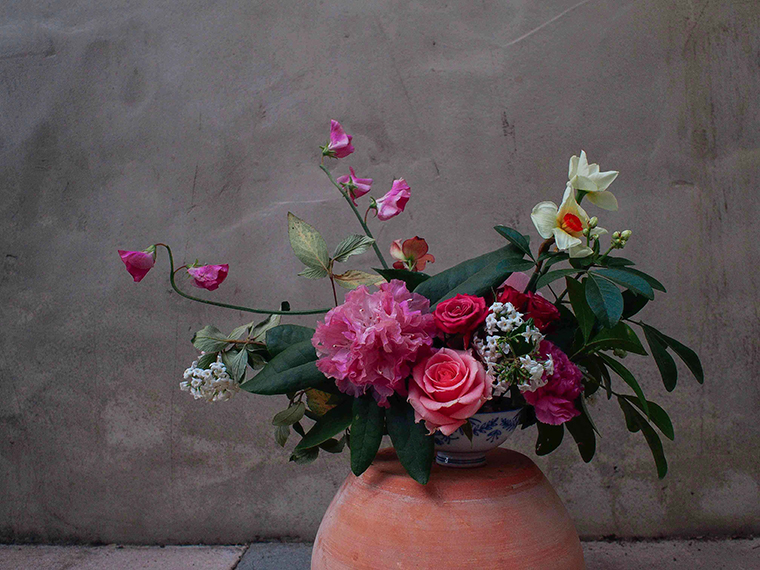 Each arrangement is a study in shape, line and form. Photo: Eliza Rogers