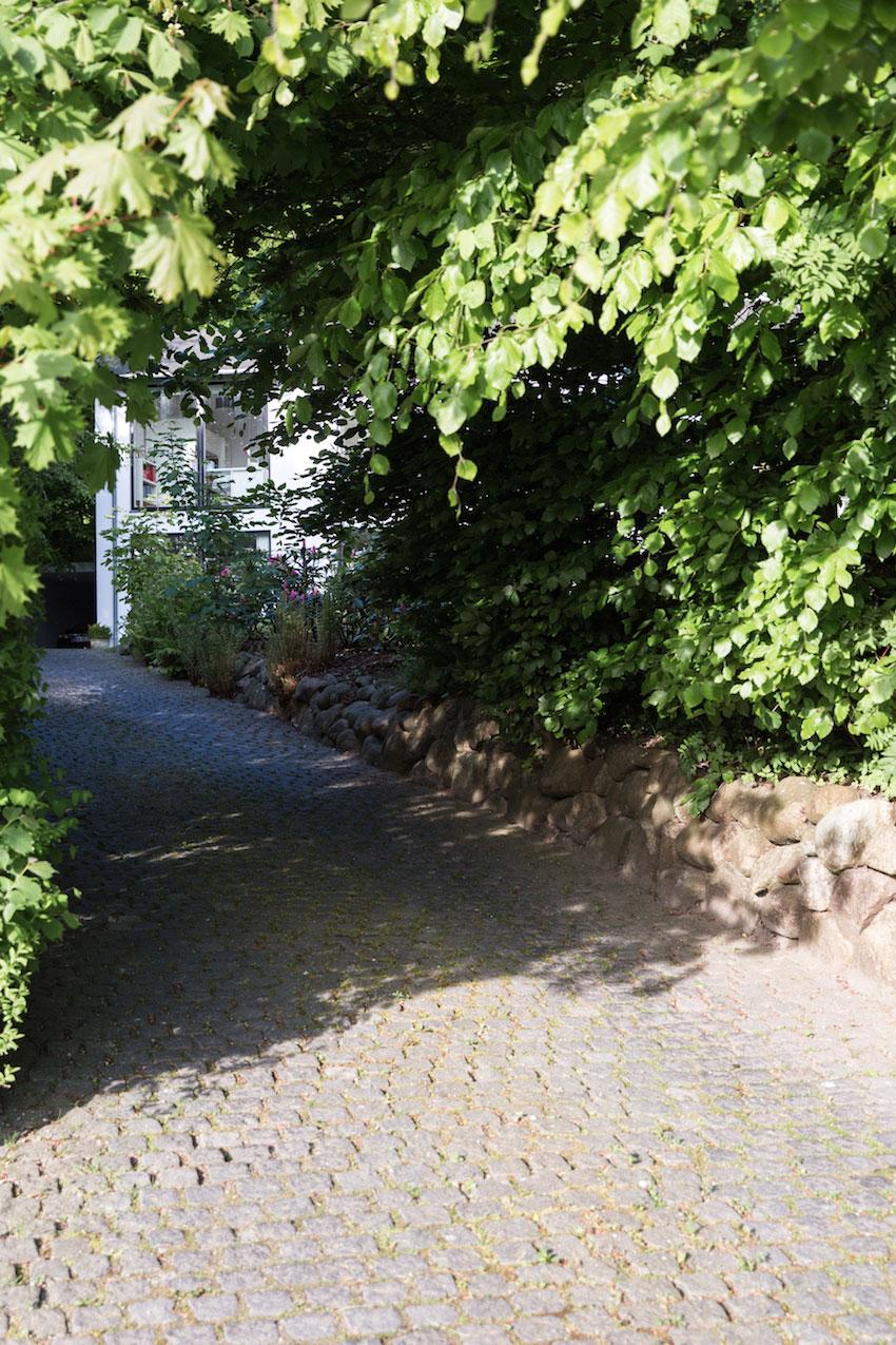 Stokkevad-Maimouselle-079.jpg