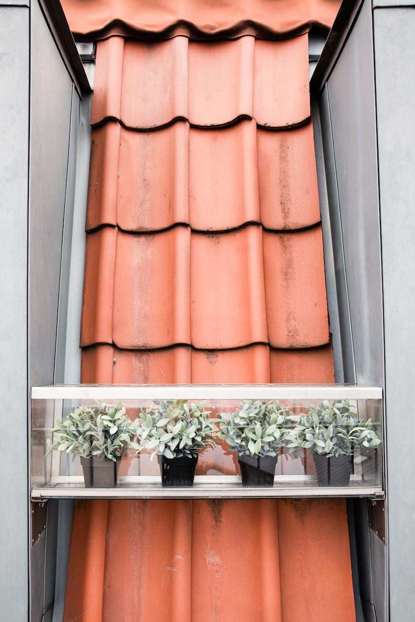 Porcelaenshaven-2a-Maimouselle-073.jpg
