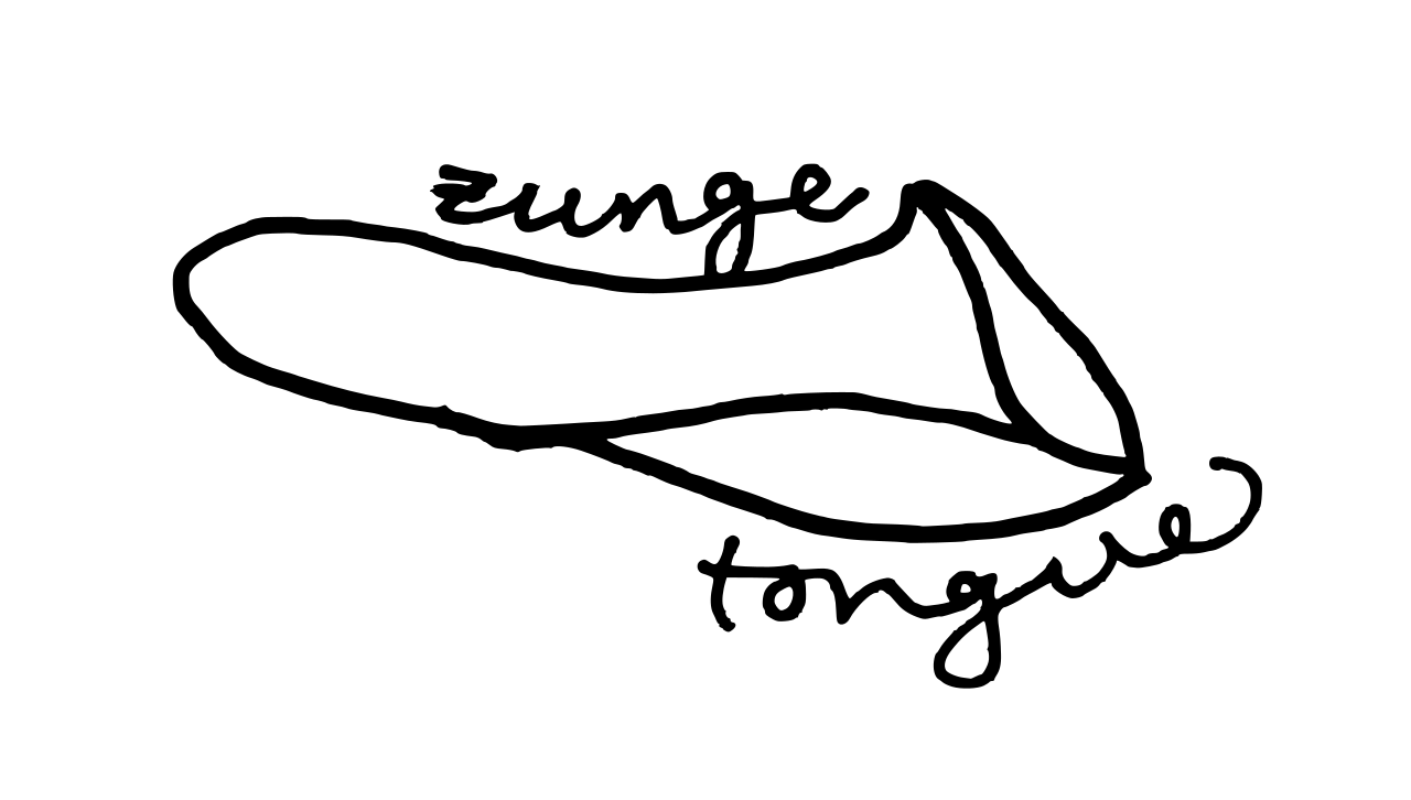 tonguepic.png