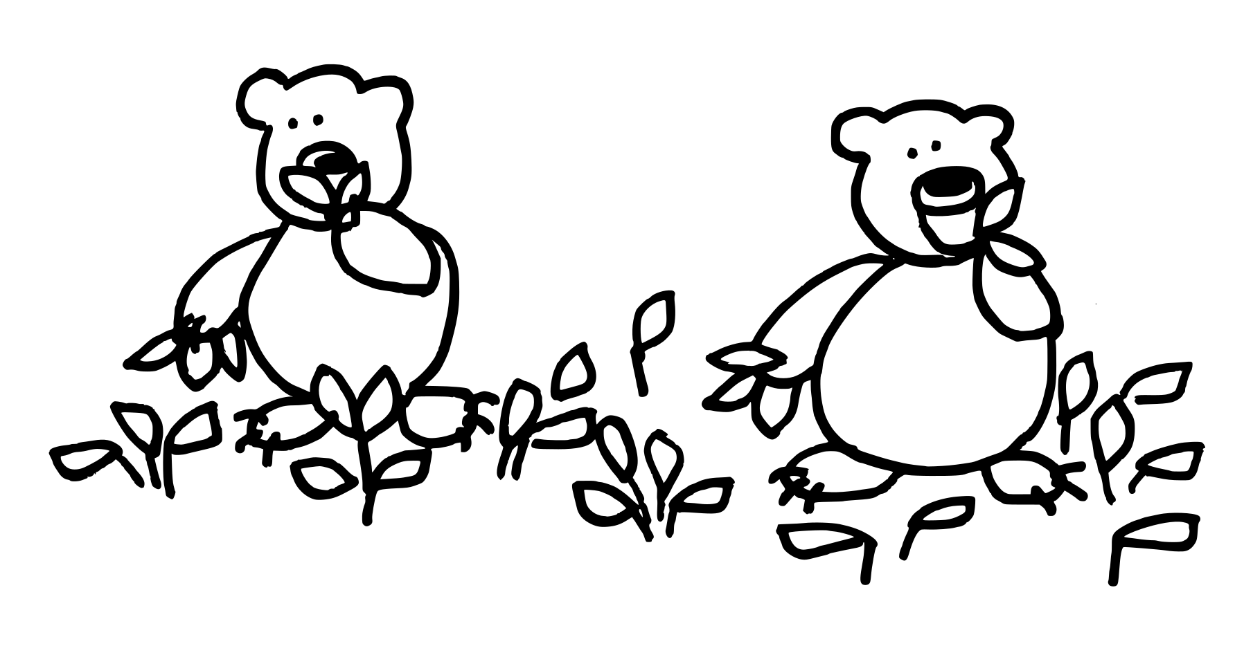 bearslauch.png