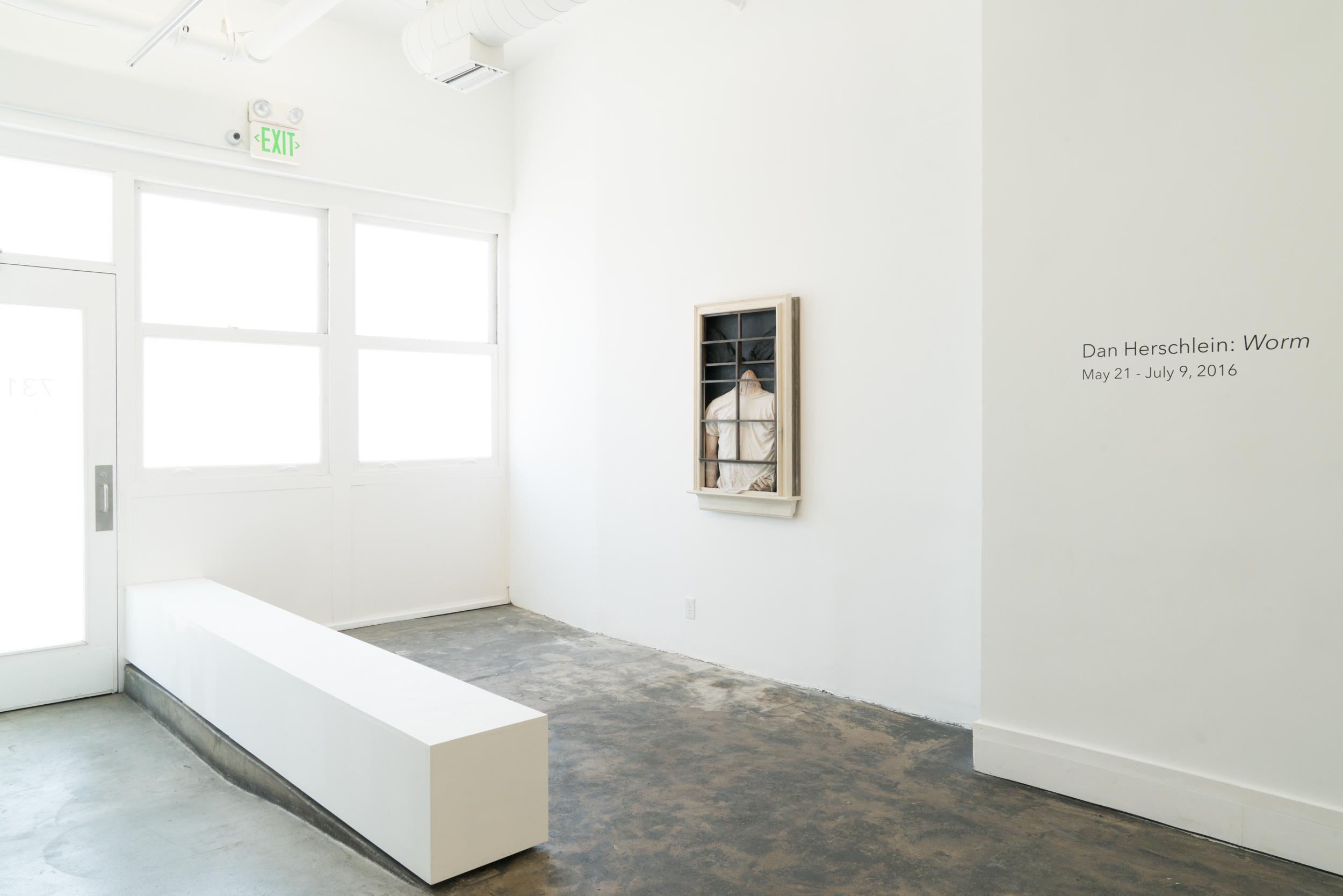 Dan Herschlein - Worm - AALA Gallery - 2016 - Install Images - Medium Res-1.jpg