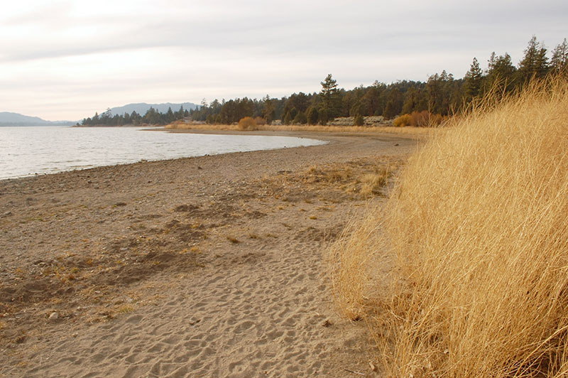 airstream rental san diego big bear lake.jpg