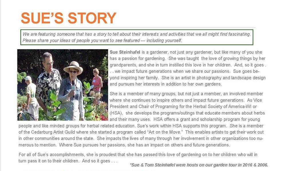 Sue's Story (2).jpg
