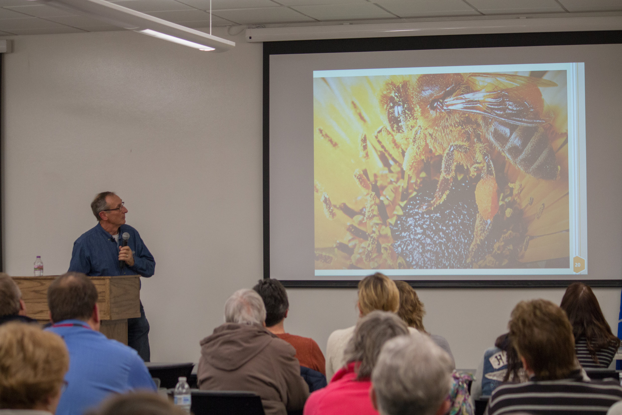 Roots & Branches - Bees Presentation 3-2018-8.jpg