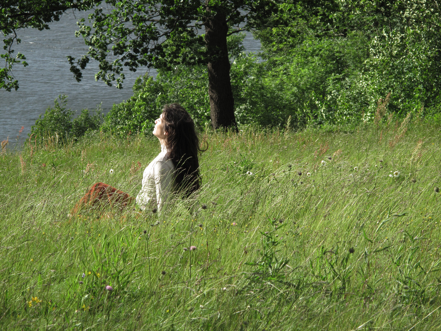 Section of image: Fernanda Branco, performance during the Festival of Silence 2009 in Esviken.