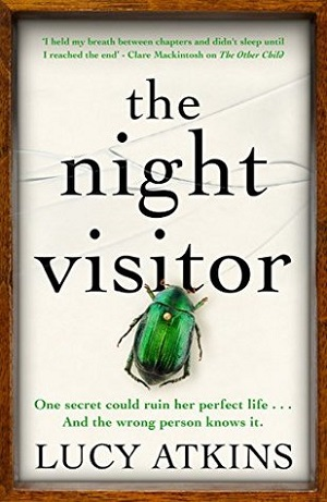 The Night Visitor.jpg