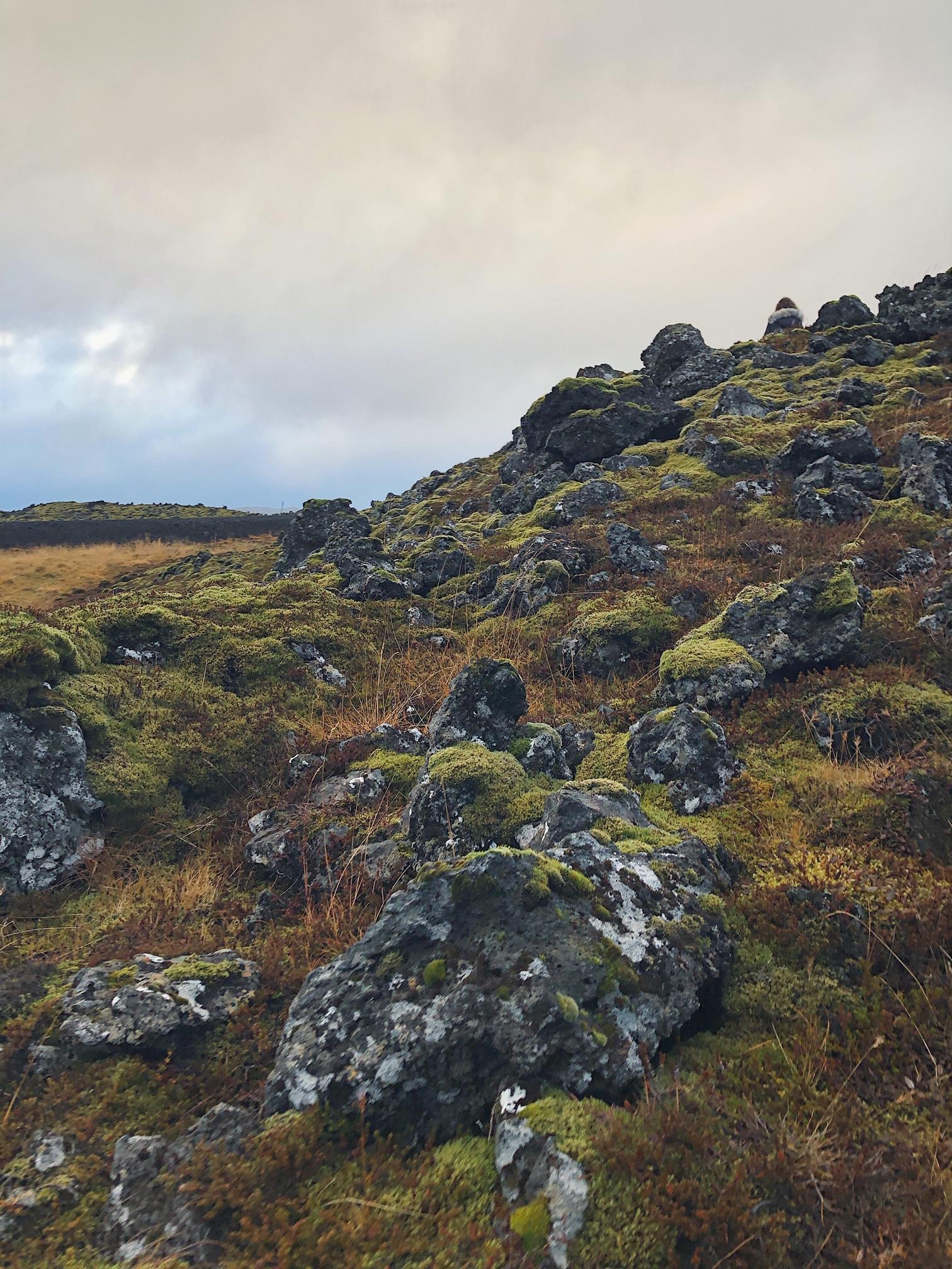 Lava fields3.JPG