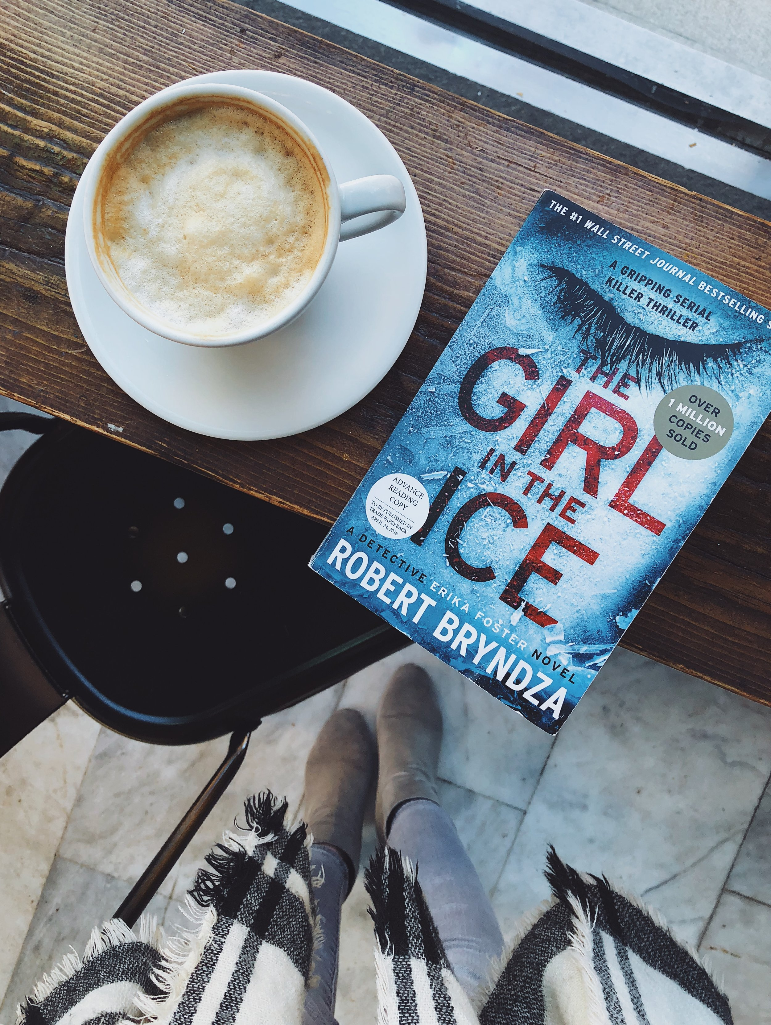 The Girl in the Ice.JPG