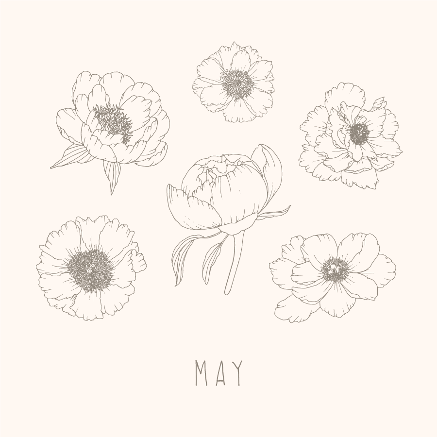 may.monthly.intentions.illustration.png