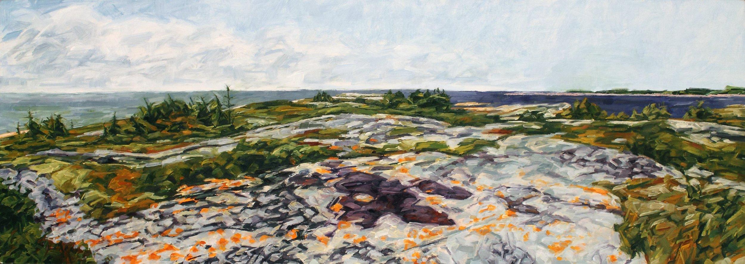 Northern Landscape II-Lichen Headland