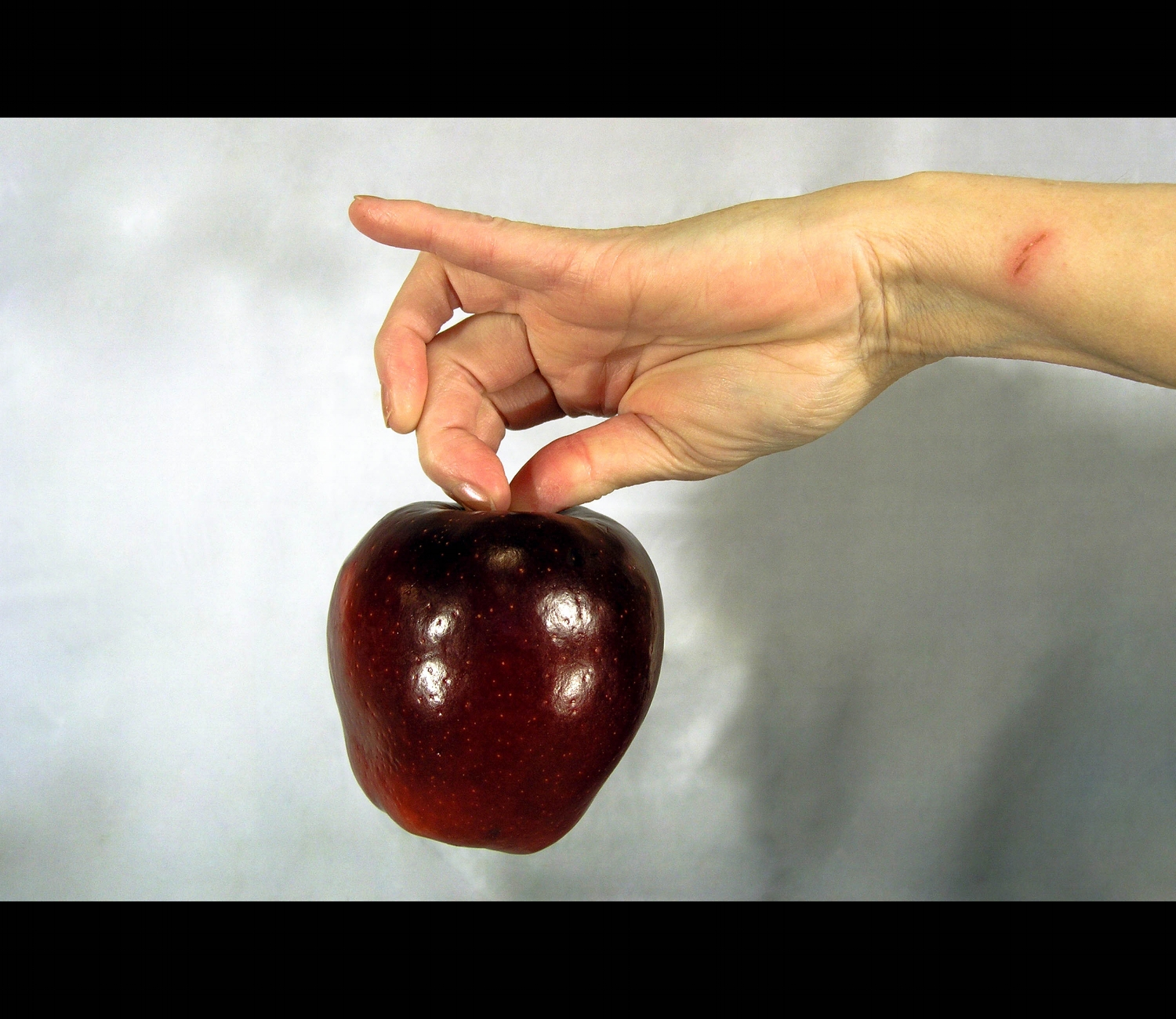Apple Hand-web.jpg