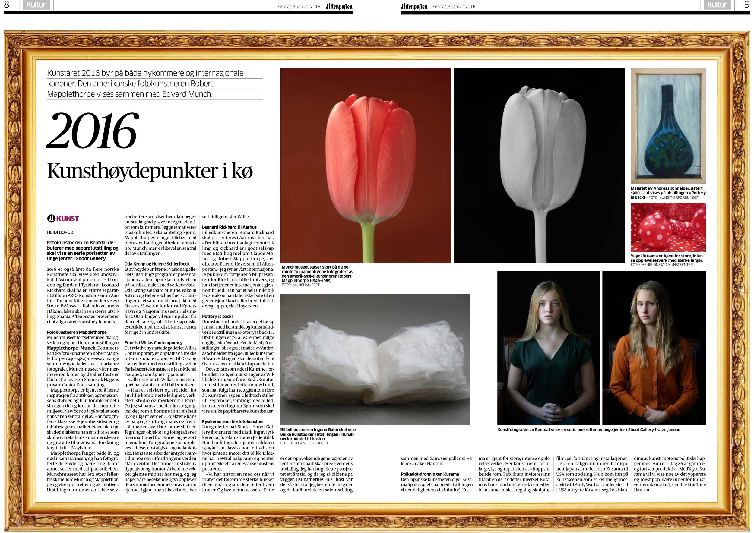 03.01.2016 Aftenposten.jpg