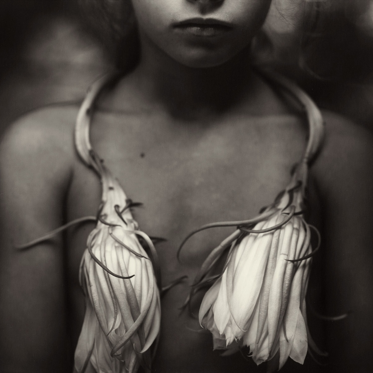 SALLY MANN  A Matter of Time at Fotografiska   01.08 - 30.09.2012