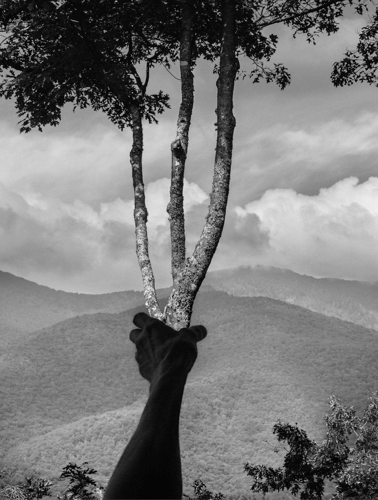 Arno Rafel Minkkinen - Halfway Up Mt. Mitchell, Burnsville, North Carolina 2013