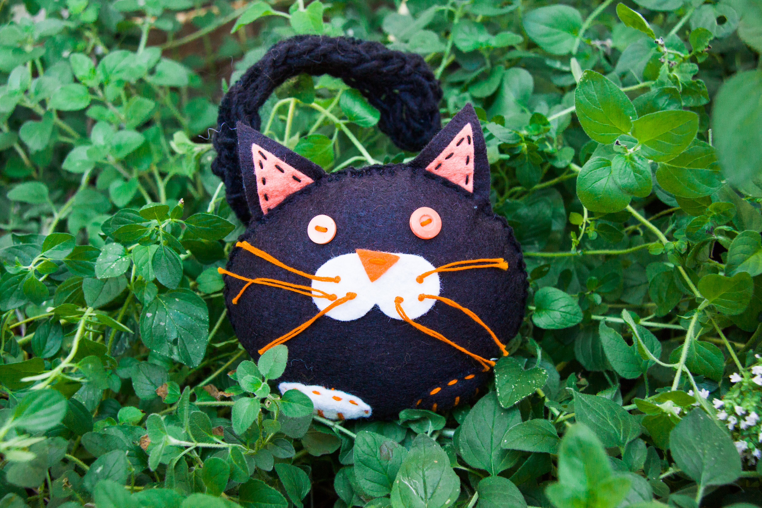Black cat for Halloween | Autumn crafts the the Forest Fairy Crafts  books by Lenka Vodicka-Paredes and Asia Curry. Handwork and enchanted ideas for children of all ages.
