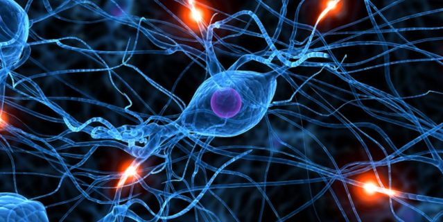 Sign up!  FREE KNOWSCIENCE TALK: STEM CELLS AND BRAIN HEALTH DECEMBER 13TH 6-9PM