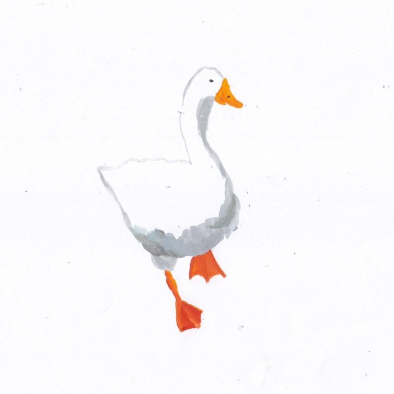 white-goose.png