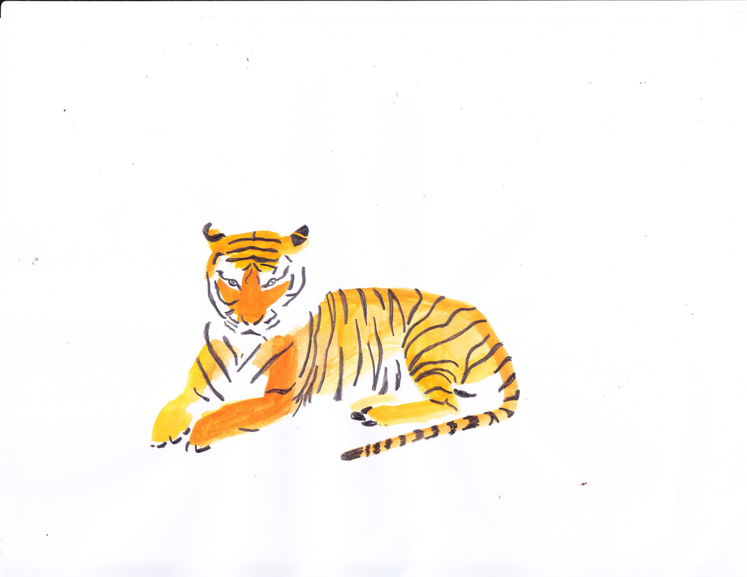 tiger4.jpg