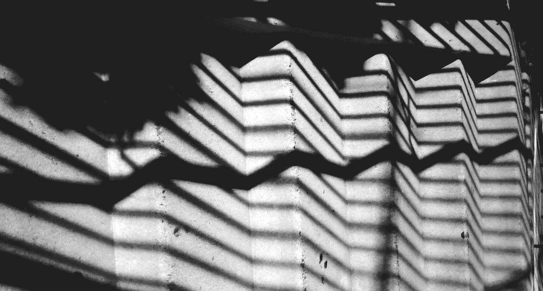 Bio — Line & Circle