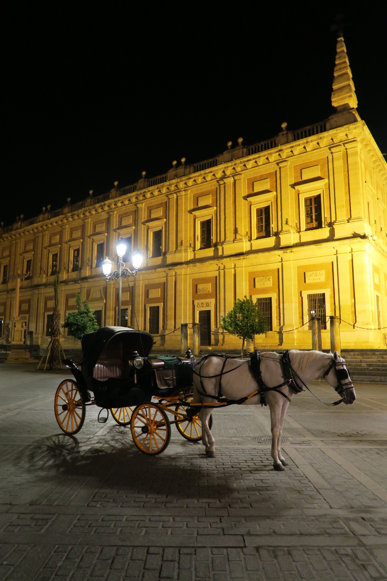 Sevilla horse and carriage from Sincerely Yours Susie Seville blog post. Photo credit Susie Cormack Bruce.JPG