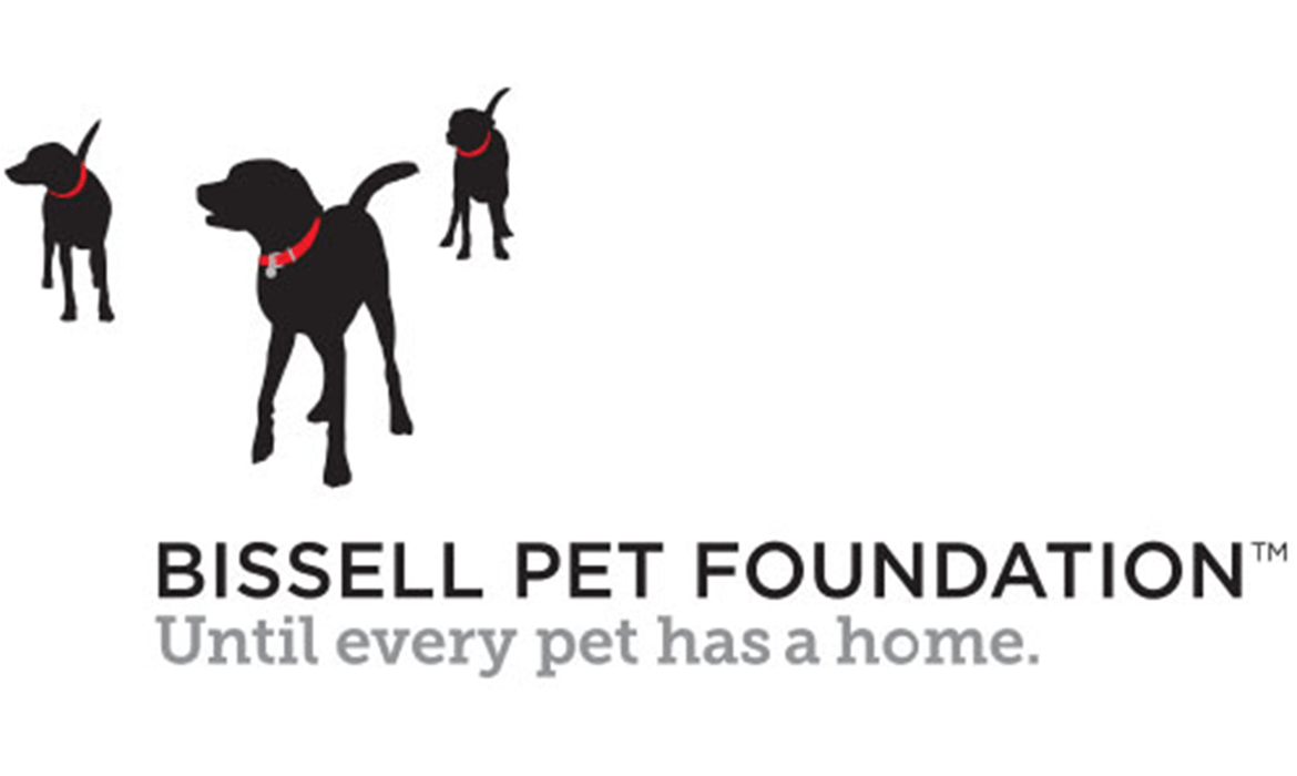 featured-image-bissell-pet-foundation_1170x700.png