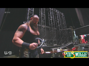Podswoggle374Pic.jpg