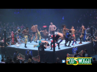 Podswoggle448Pic.jpg