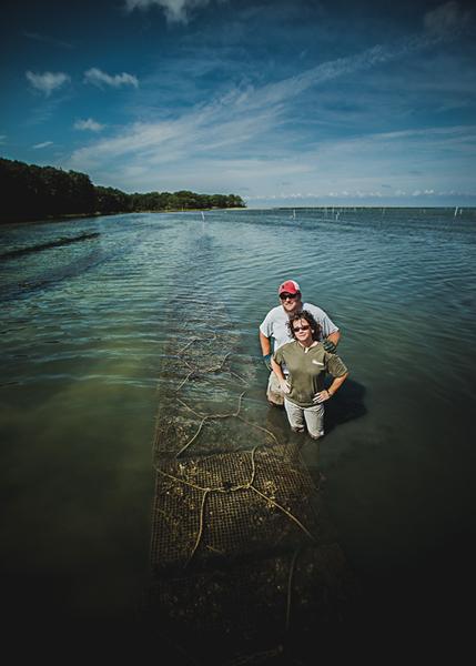 Shootingpoint_oysters_virginia (3 of 4).jpg