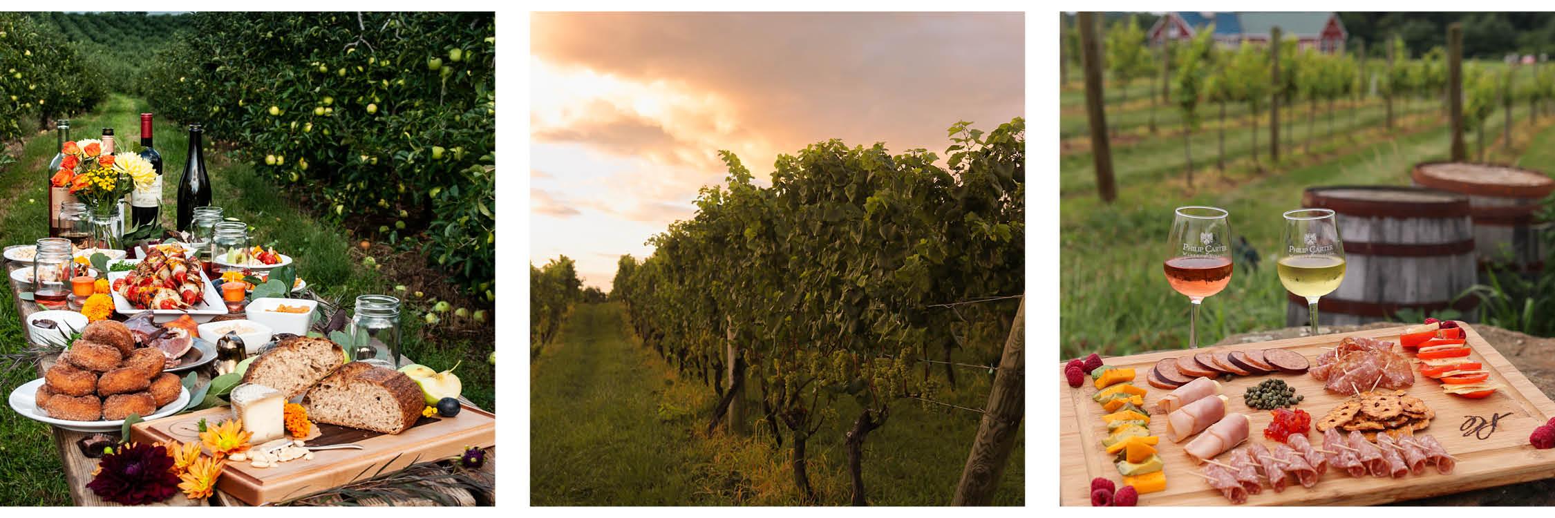 Images: VAfoodie / Virginia Wine