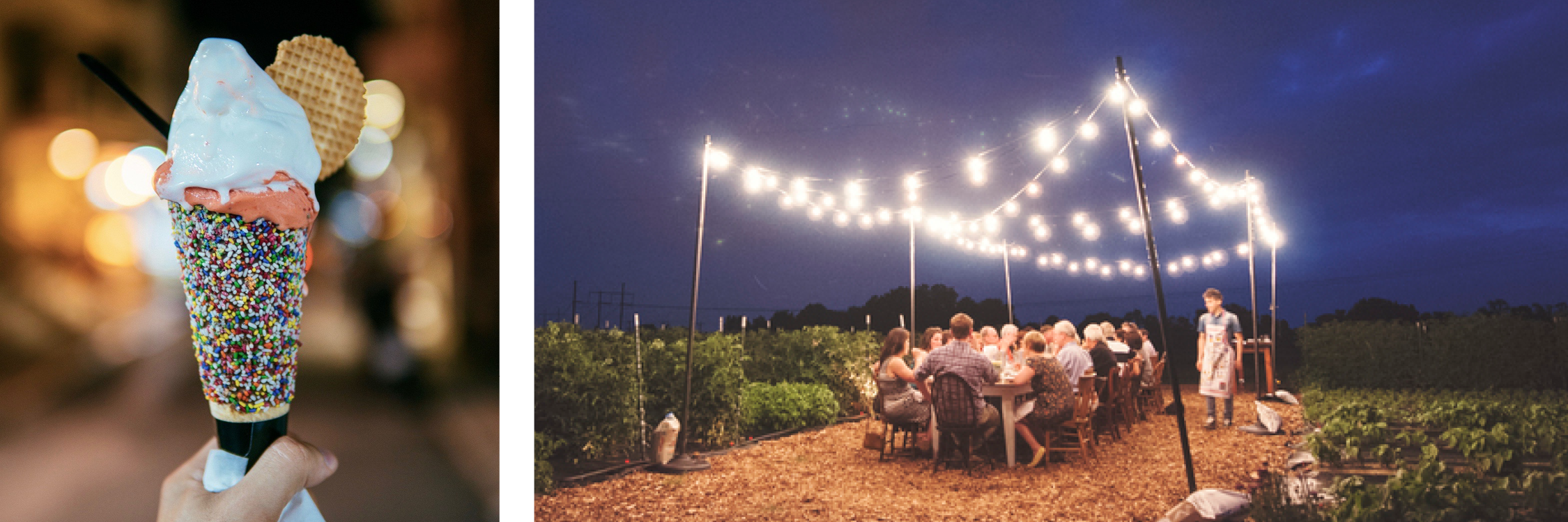 Outdoor Image: Dinner in the Field (Richmond)