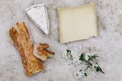 Fermentation Basics eatCultured Microbes
