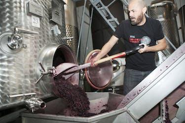 Brooklyn Winery Connor McCormack Kinnek Entrepreneur