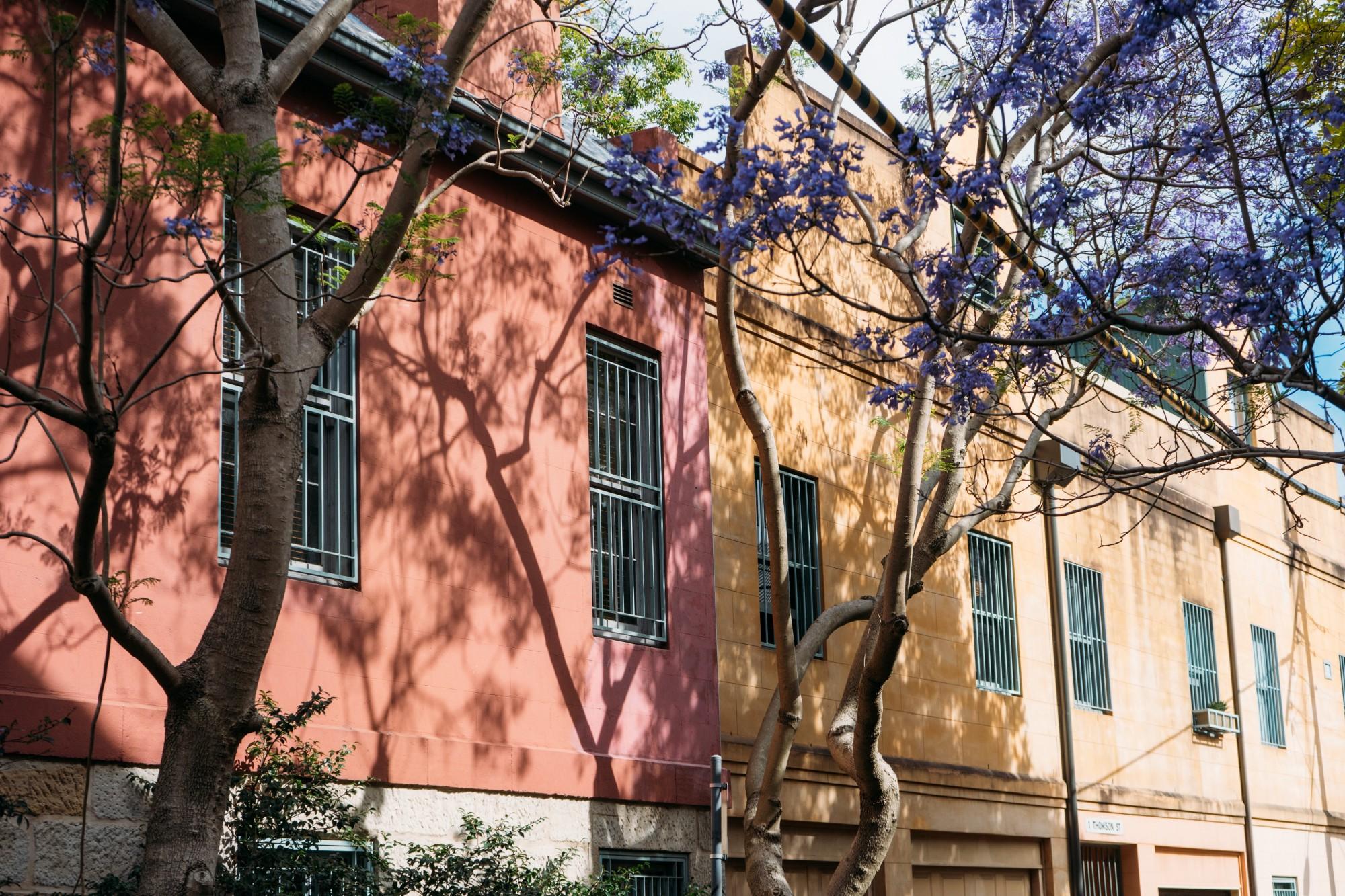 :Different Property Management: Sydney, The Xoogler