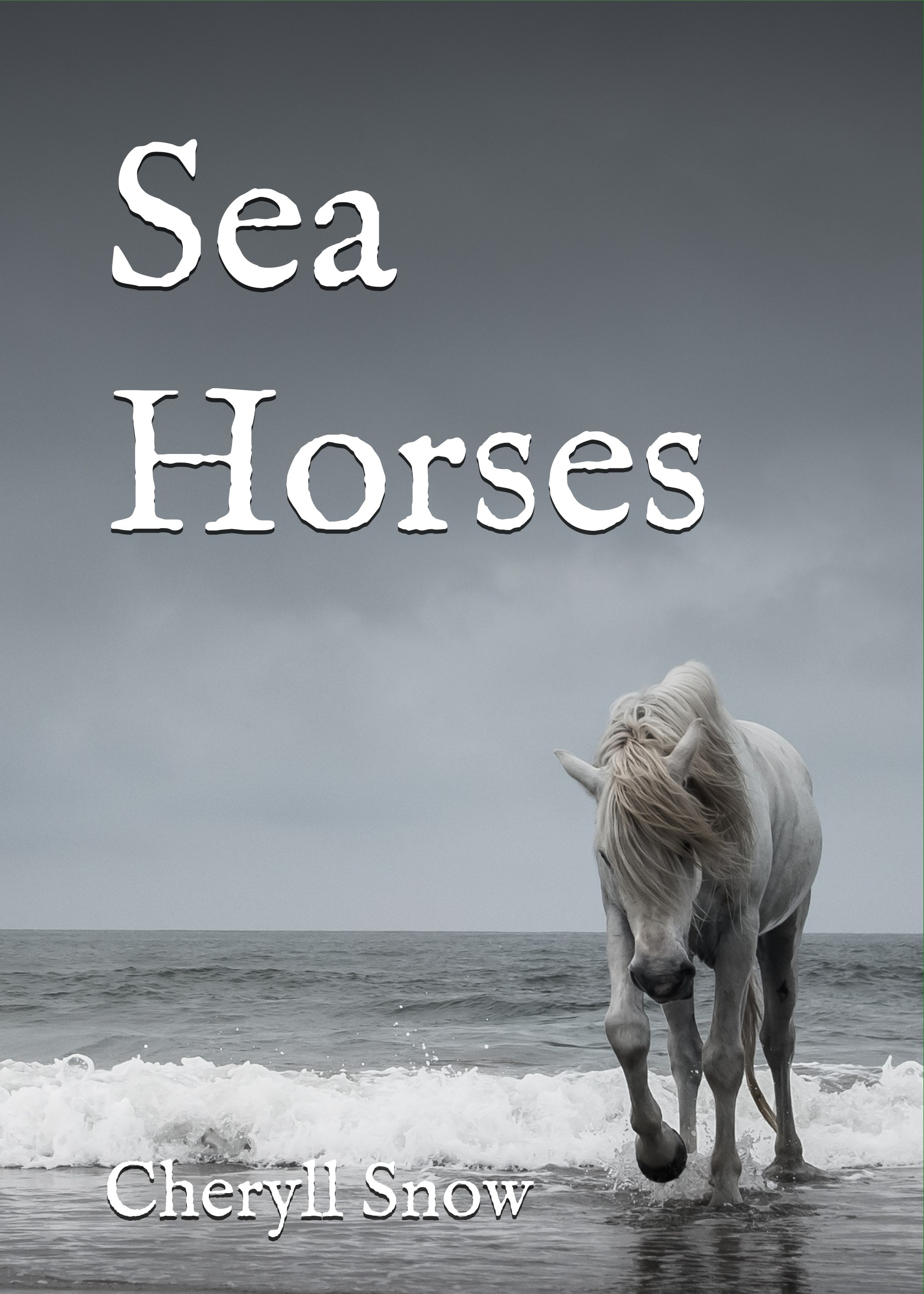 Sea Horses Back Cover Spine and Front Cover (2).jpg