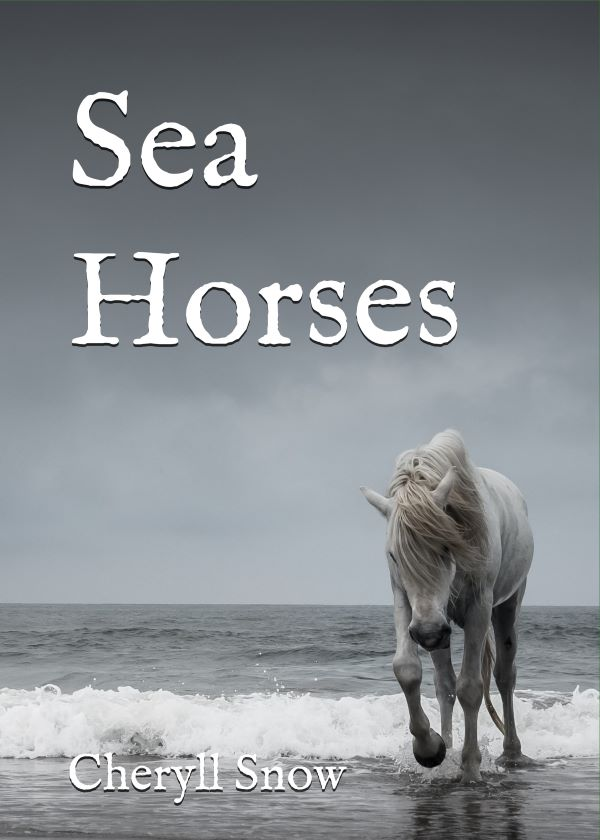 Sea Horses Back Cover Spine and Front Cover smaller.jpg