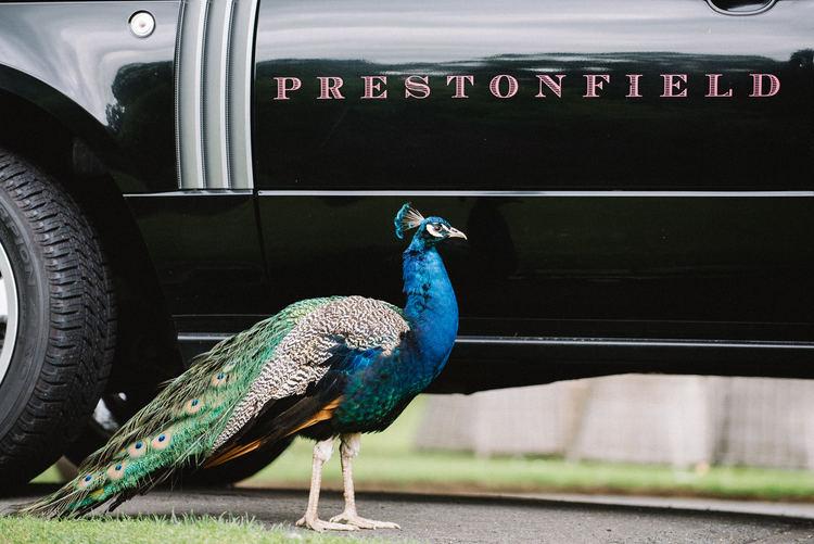 Prestonfield House Wedding by Marc Millar Wedding Photography