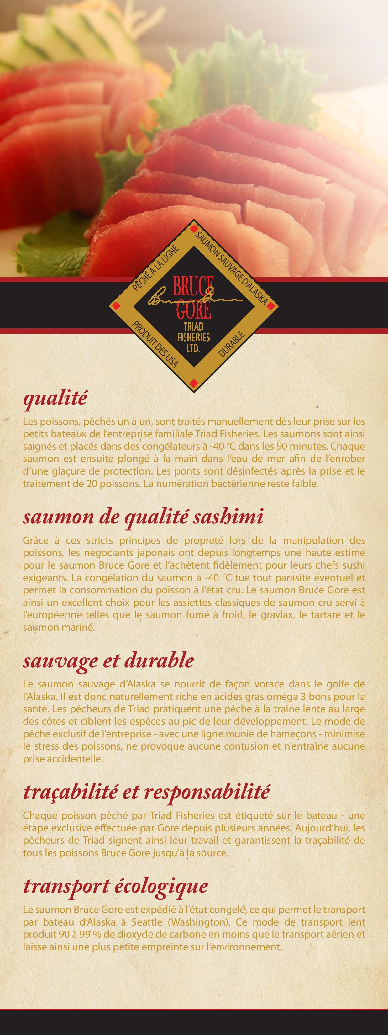 French brochure