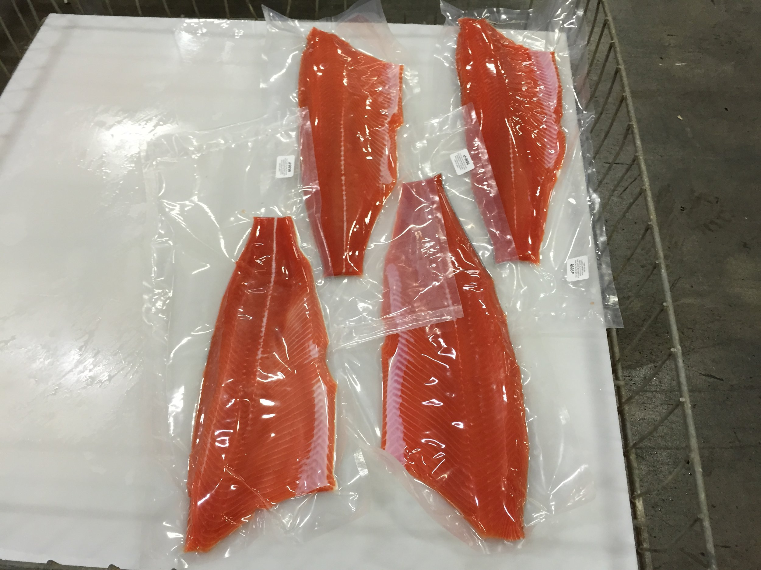 Coho fillets packaged